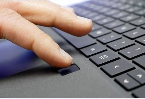 không sử dụng vân tay khi diệt web