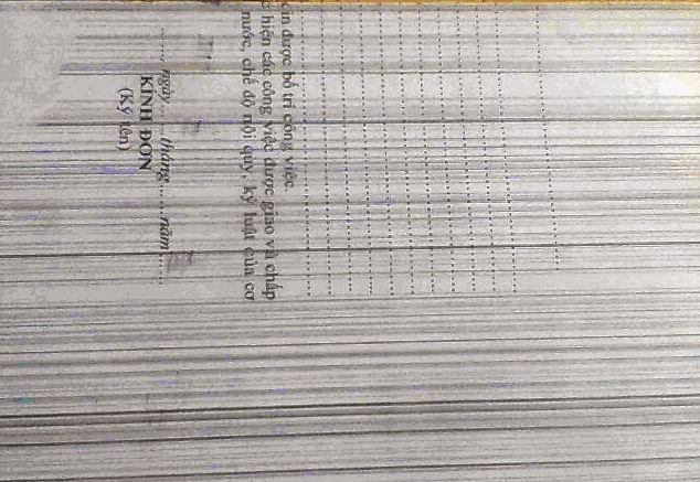 Lỗi bản in bị sọc dọc trên trang giấy  khi sửa máy in tại nhà
